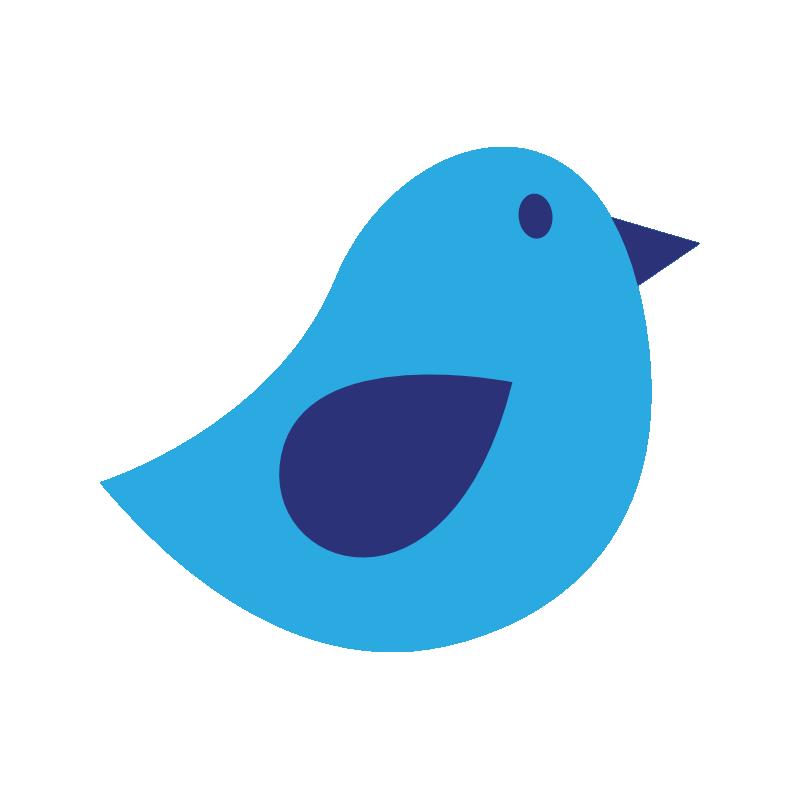 Blue Jay Cam – Westchester, NY